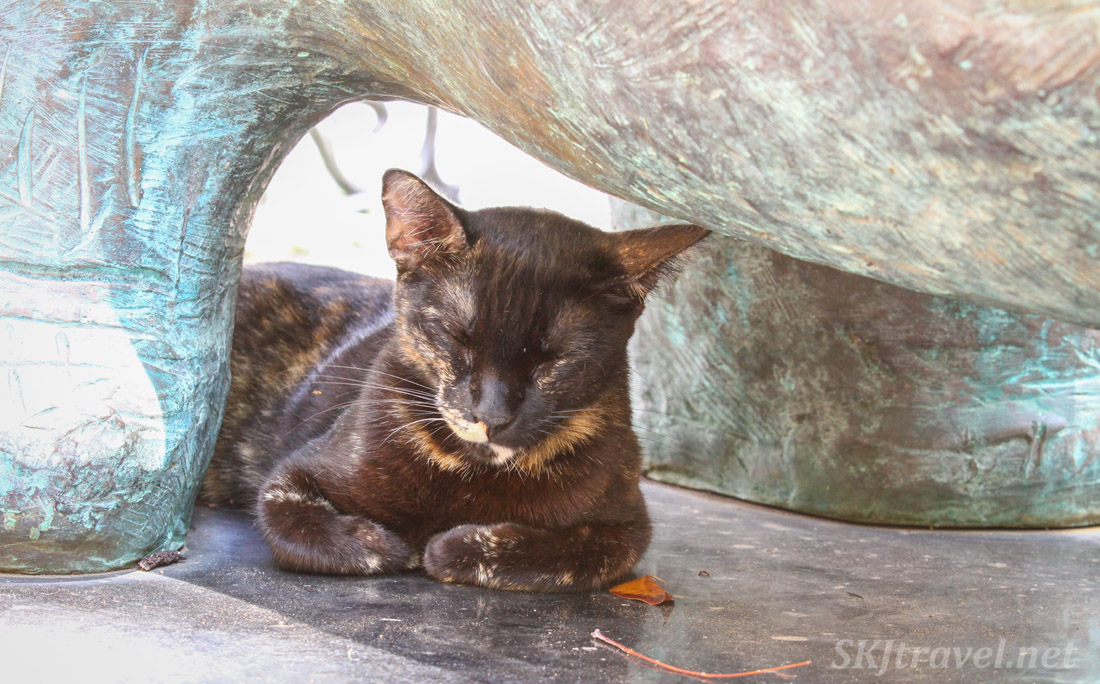 Kitty cat napping underneath a bronze statue in a small park in Old San Juan, Puerto Rico.