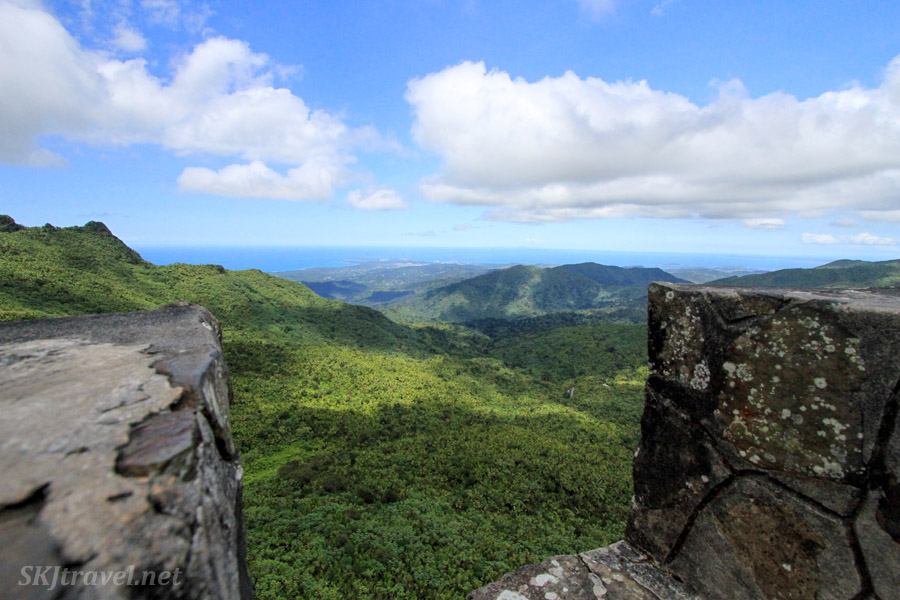 View of El Yunque National Forest from a lookout tower, Puerto Rico.