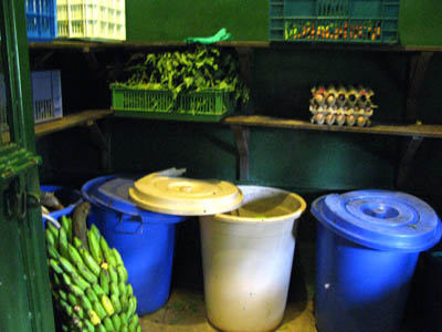 Food stores in the chimp house. UWEC, Uganda.