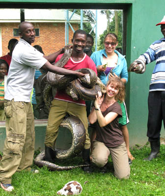 The python's girth is almost as big as the keeper's leg. UWEC, Uganda.