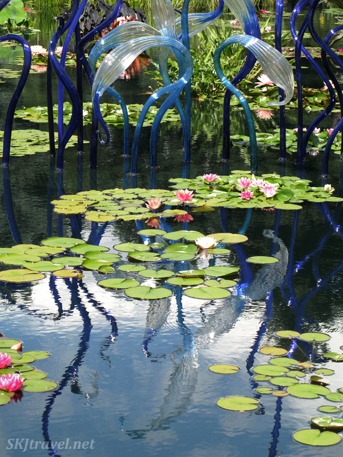 Chihuly glass sculptures in a pond at the Denver Botanical Gardens.