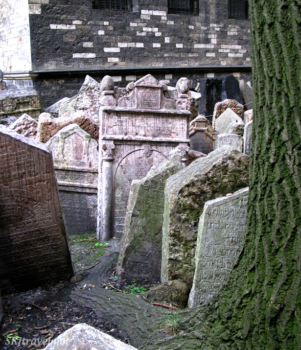 Small section of the Old Jewish Cemetery with gravestones crammed into every inch of ground, a mossy tree trunk covers the rest of the ground. photo by Shara Johnson