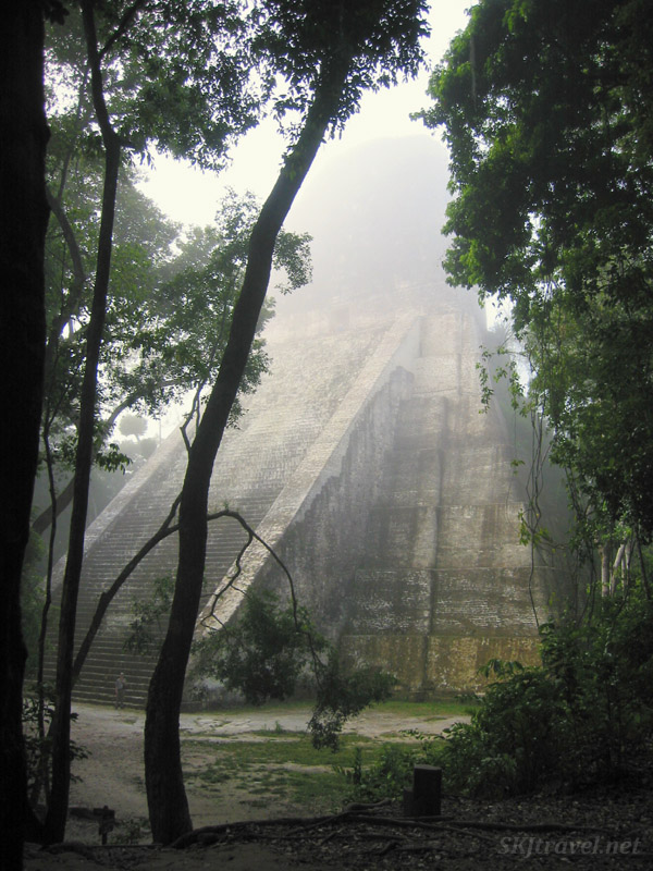 Temple Five, a structure of large gray steps forming a rectangular-based pyramid rises into a gray mist, framed by tall green trees. Photo by Shara Johnson