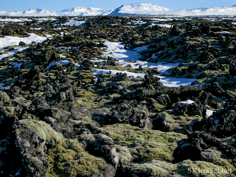 Lava field with moss and lichen, Snaefellsnes Peninsula, Iceland.