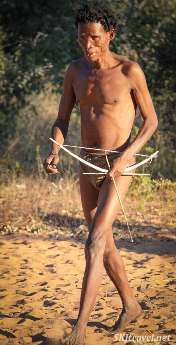 San man demonstrating the use of bow and arrow at the Ju/'Hoansi-San Living Museum near Grashoek, Namibia.