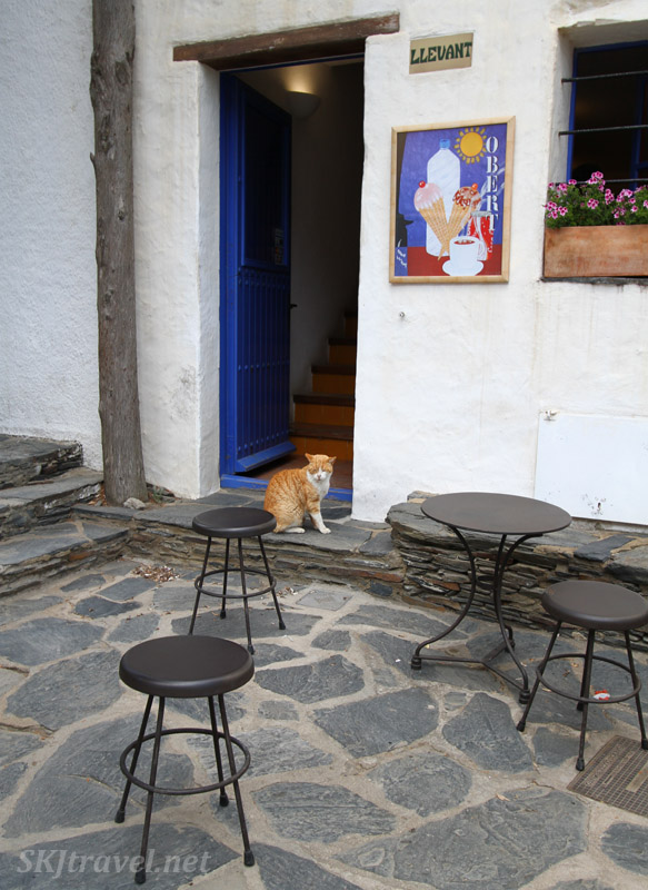 Cat sitting outside a concession shop in a courtyard at Dali's home in Portlligat, Spain.