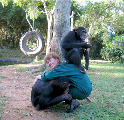 Playing with the chimpanzees. Sara and Nepa. Uganda