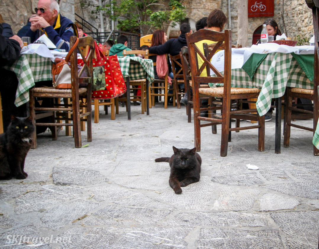 Black cat guarding the thruway of a cafe in Mesta village, Chios Island, Greece.