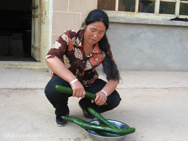 Large cucumbers grown in the village of Dang Jiashan, Shaanxi Province, China.