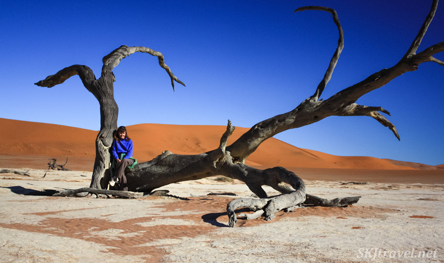 Shara sitting in a dead tree in the Dead Vlei, Sossusvlei, Namibia.