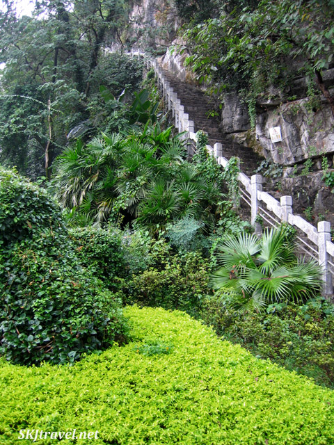Up and away into the forest at a park in Guilin, China.