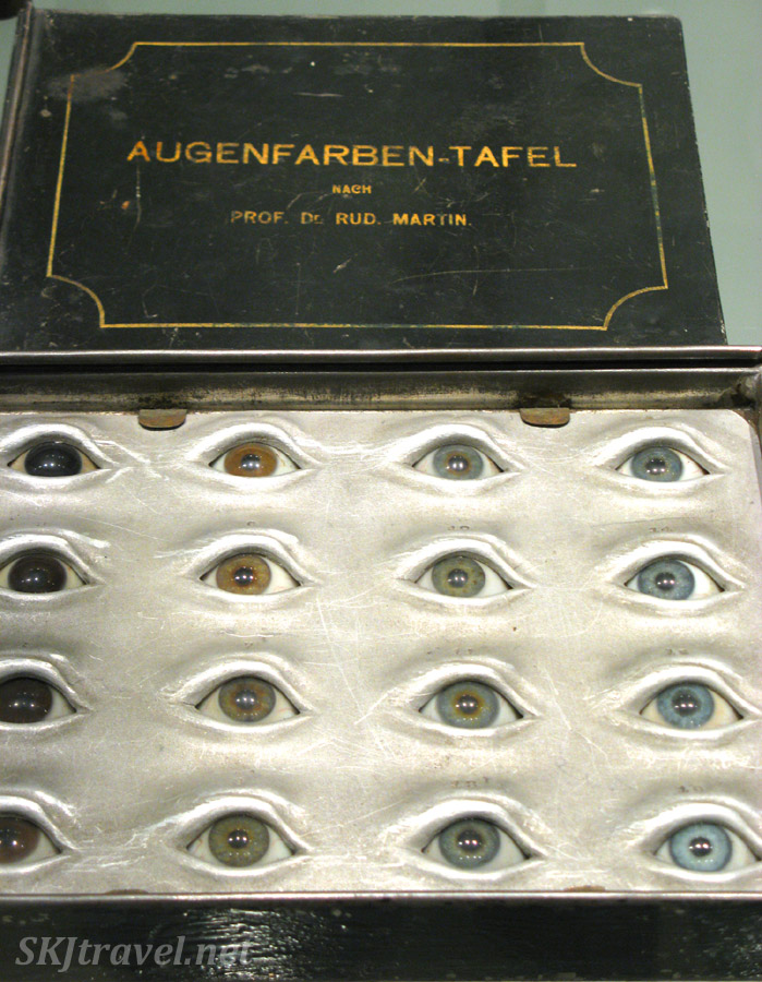 Case of glass eyeballs, Wroclaw University, Poland.