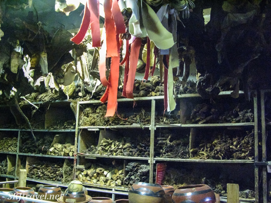 Witch doctor supply store with animal bones and herbs. Johannesburg, South Africa.