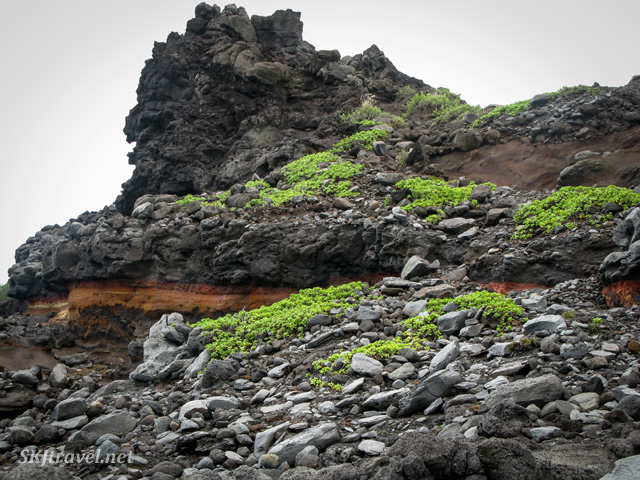 Hiking down through lava rock to the Olivine Pools on Maui, Hawaii.