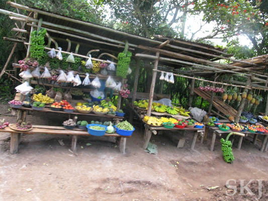 Roadside fruit and vegetable stand. Uganda.