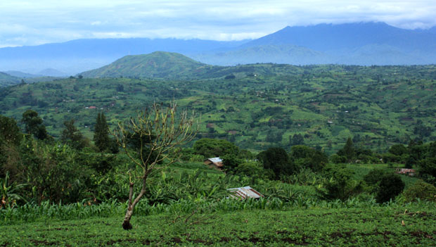 View of lower Rwenzori range near Fort Portal, Uganda