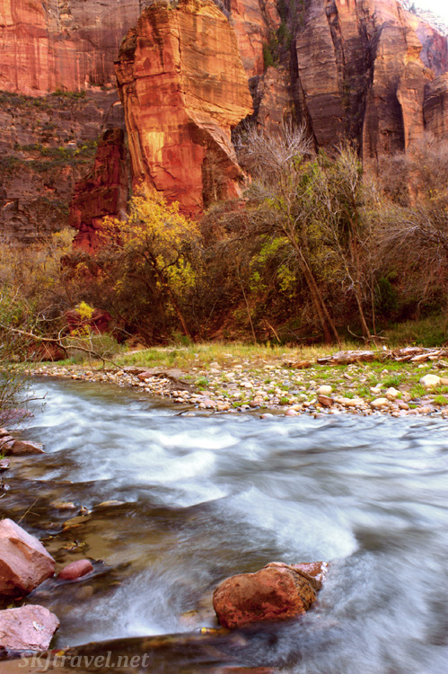 Virgin River in narrow canyon with red rock and yellow tree leaves.